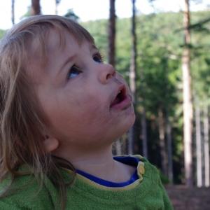 Esterka pozoruje motýla.