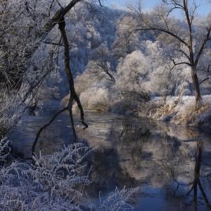 Sechov v zimním.