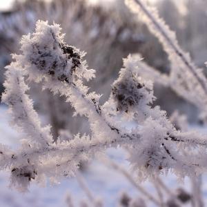 Letošní zima byla úžasná.