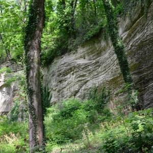 Zvláštní skalní textura a Vrchlický.