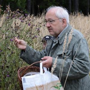 Profesor Jičínský vysvětluje rozdíl mezi pcháčem a bodlákem.