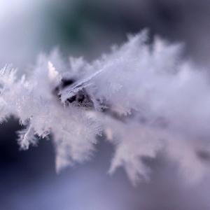 Vzpomínka na zimu...
