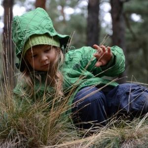 Trpaslík v lese.