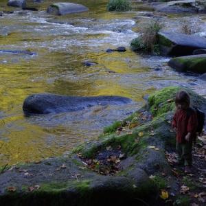 Ester na kamenech.