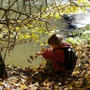 Esterka háže listí do Sázavy.