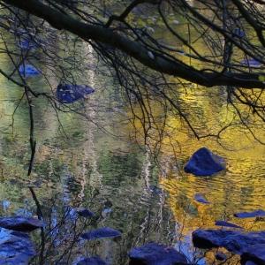 Zrcadlení na zlaté řece.