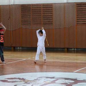 kendó - nácvik seků.